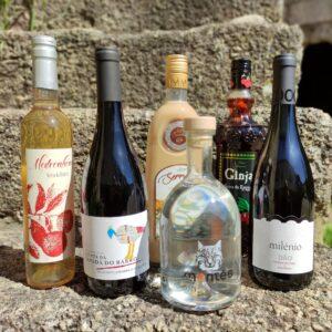 Licores e Vinhos